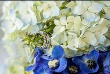 Bouquets / Flower arrangements and bouquets