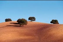 Andalusië / Te quiere