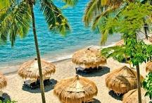 Tropical Paradise / by Nautical Wheeler Jewelry