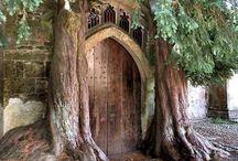 Doors / by James Colburn