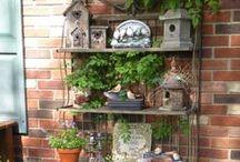 gardening goodness. / dreamy gardens. gardening tips. all about container vegetable gardens. garden goodies. / by pickel swimming