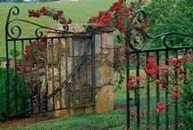 Doors & Gates / by Doreen Guthrie