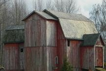 Beautiful Barns / by Delesa Greene