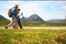 Scotland / Fàilte gu Alba! You'll find a warm welcome in Scotland whether joining our Great Glen Way, West Highland Way or Rob Roy walks. And, if you're well-seasoned walker up for a bit of a challenge, why not add on an extra night and tackle the UK's highest peak of Ben Nevis (1352m).