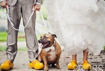 Dutch Inspired Weddings