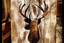 Deer / by Marty R
