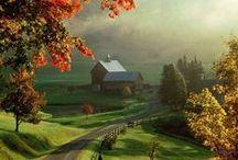 New England / by Marina Costa