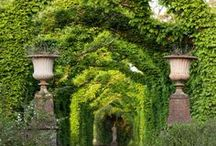 Outdoors living and gardens