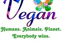 veg. ☮ / Vegetarian // Vegan // Animal Rights  / by JEN ♡