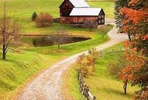 country living/homesteading