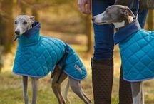 coats for dogs / Many dogs need a coat, especially short haired breeds such as whippets. We make stylish coats for dogs - specializing in sighthounds and dachshunds - www.redhoundfordogs.com