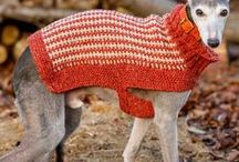 knitting for dogs / If you have a shivering dog, like Bruno, you will love our board of dog jumpers. Great pleasure can be had by knitting your dog a sweater, especially if it is a short haired breed like a whippet.