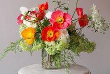 just great flowers / by Chiara Milott