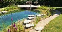Natural Swimming Ponds - natural design