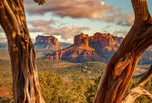 USA Nationalparks im Westen / Inspiration für deine nächsten Roadtrip in den Westen der USA. Wir zeigen dir die schönsten Spots von Seattle bis San Diego, vom Yellowstone bis zum Grand Canyon!