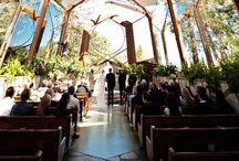 Wedding / by Jessie Garcia