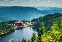 Schwarzwald | Black forest / Wunderschönes Deutschland: Der Schwarzwald zählt für uns zu DEN schönsten Ferienregionen Deutschlands: Lass Dich inspirieren von einsamen Wanderpfaden, kulinarischen Leckerbissen und romantischen Hideaways!
