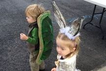 The Tortoise and the Hare / The Tortoise and the Hare