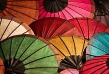 Parasols / by Laura Power