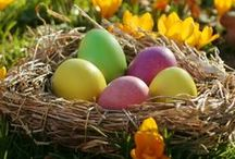Easter / Easter Recipes - Decor Ideas - Kid Crafts - Easter Eggs - Easter Baskets and more! / by Erin @ The Humbled Homemaker