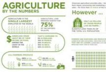 Infographics / Agricultural-related infographics by the Noble Research Institute