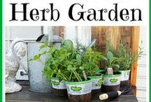 Herb Garden & Preserving / I love to garden & cook..I need these things / by Sissy Jo