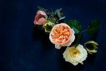 decor • bloom