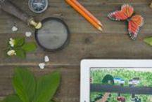 Homeschooling Boys / Teaching, Homeschooling, fun / by Kristen Doucet