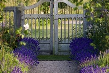 Gates / Gates into gardens and special places.