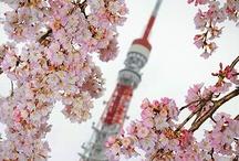 Japan of my Dreams / <3