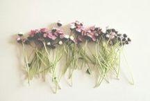 Spring / by Rachel Baylis