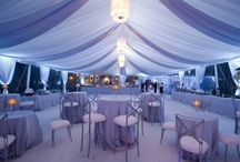 Winter Inspired Parties / by Michael's Party Rentals, Inc.