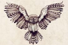 Owls / by Angelique Workman