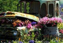 Green Gardening  / by Brook Moniger