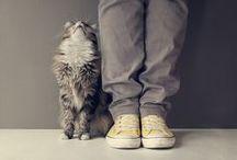 them, the cute ones / by Alina Pîrvu