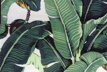 Style: Palms & Greens