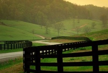 Beautiful Kentucky / by Amanda Schelling