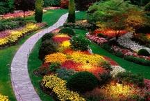 Gardens / by Bonnie Caldwell