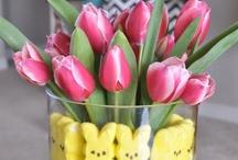 Easter / by Jennifer Rayden Carroll