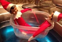 Elf On A Shelf  / by Jennifer Rayden Carroll