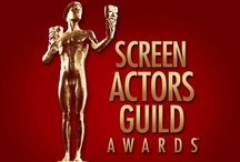 On the red carpet at the 2013 SAG Awards