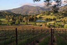 Travel to Wine Country / Napa Valley Wineries