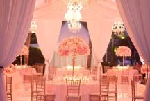 Dream Wedding  / by Marley Martin
