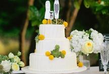 Taarten • Cakes