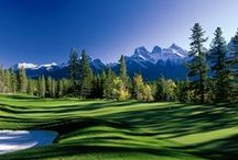 Championship Courses / Welcome to the best golf experience on the planet. With Preferred Golf, guests enjoy a level of service and personal attention that is normally reserved for the greatest players in the world.