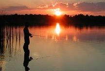Toledo Bend Fishing / Toledo Bend Lake is the #1 bass fishing spot in the United States. Grab your pole and get to work.