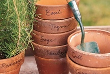 clever clay pots / can't get enough...