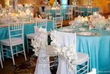 Tiffany Blue Wedding  / Tiffany blue wedding ideas that are modern, sophisticated, and elegant; perfect for a summer wedding. For flower inspiration visit us at www.signaturebloom.com | florist in San Jose, CA 95121 |  Please note that images on this board are owned by their original owners, you can view the source by clicking on the picture twice.