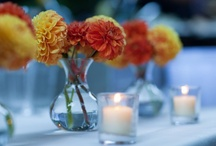 Yellow and Orange Wedding  / Mustard yellow, grapefruit orange and turquoise wedding ideas.  Simple, casual and laid back, great ideas for a spring or summer backyard wedding.  For flower inspiration, check us out at www.signaturebloom.com | San Jose wedding flowers |  Please note that images on this board are owned by their original owners, you can view the source by clicking on the picture twice.
