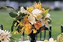 Wedding Centerpieces / Great ideas for wedding centerpieces!  For reception flowers by Signature Bloom, visit us at www.signaturebloom.com | wedding flowers San Jose, CA | Please note that images on this board are owned by their original owners, you can view the source by clicking on the picture twice.
